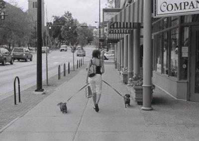 Fata Morgana on Boulder Boulevard