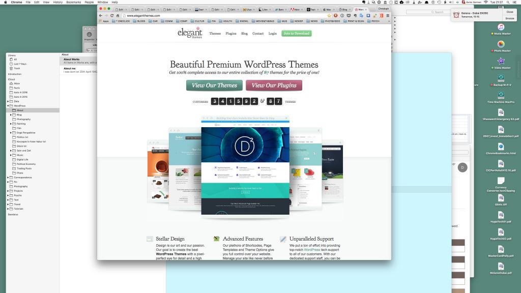 Screen Shot Divi Web Site